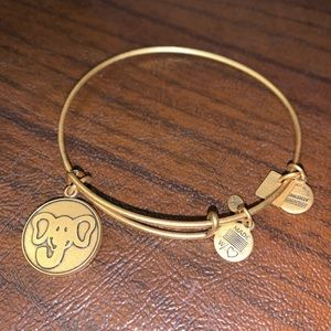 Alex and Ani Bangles (3)